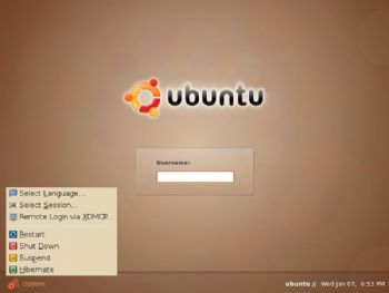 Ubuntu log-in screen