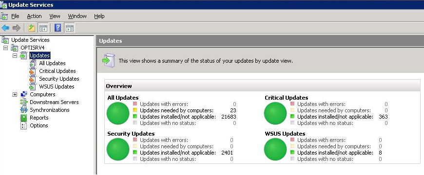 updates using the windows server update services management tool