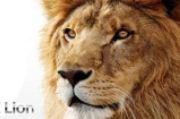 Apple OS X: Lion