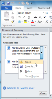 When you load Word after a crash, it will help you restore what you were working on--provided AutoRecover is set up properly.