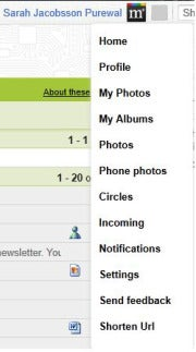 Google+ Manager gives you one-click access to basic Google+ features.