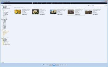 windows live photo gallery 2011 free download