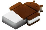 Developers Expect Much From Ice Cream Sandwich