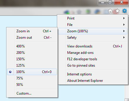 Internet Explorer zoom options