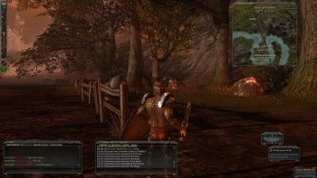 Darkfall Online screenshot