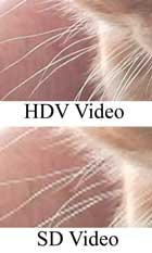 HDV vs. SD video, example 1