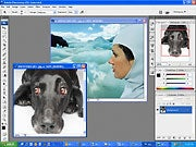 Photoshop. Click to see full-size image.