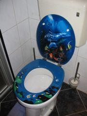 Gaudy toilet