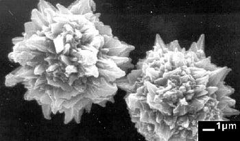 QTC particles, up-close. Image credit: Peratech