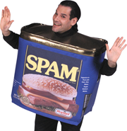 Comment spam, or spamblogs, litter the blogosphere.