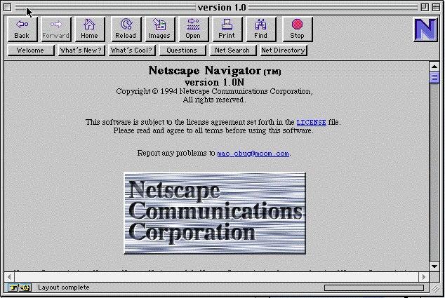 netscape analysis report