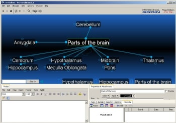 PersonalBrain Free Edition screenshot