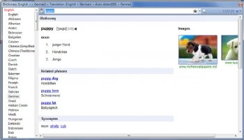 Dictionary .Net screenshot